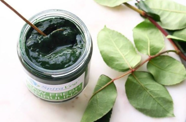 spirulina canada, shop local canda